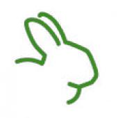 Кролик (1)
