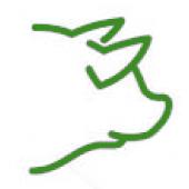 Свинина (8)